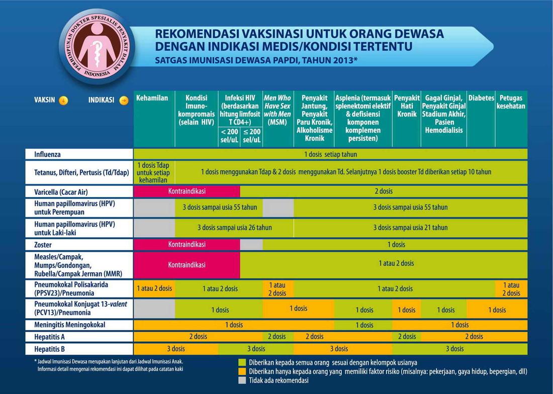 imunisasi dewasa2